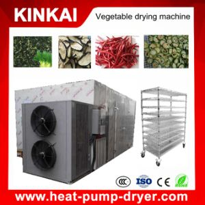 Fruit & Vegetable Processing Machines Food Dryer pictures & photos