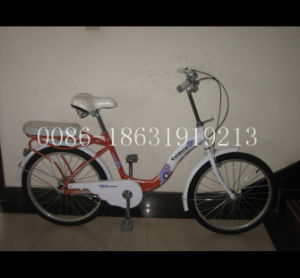 "20"" City Bicycle Lady Bike with Steel Frame (HC-LD-2075) pictures & photos"