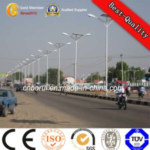 100W Solar Street Light Pole LED Garden Light Designer Street Lighting Poles pictures & photos