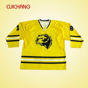 Wholesalenew Style Cheap Professional Custom Ice Hockey Jersey pictures & photos