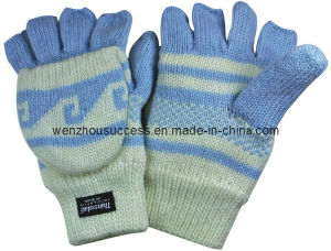 Knitted Gloves Sh12-2g021 pictures & photos