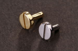 Flat Head Rivet with Factory Price pictures & photos