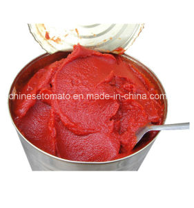 Buy Canned Tomato Paste Tin Tomato Paste Tomato Sauce 28-30% pictures & photos