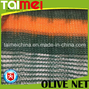 Tight Edge Olive Collection Net for Olive Havest pictures & photos