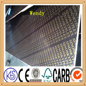 Shuttering Film Faced Plywood / Marine Plywood for Construction pictures & photos