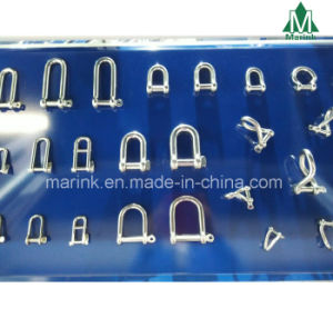Carbon Steel Stainless Steeldee Shackles / D Shackles pictures & photos