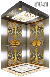 Simple and Generous Passenger Elevator/ Lift with Carve pictures & photos
