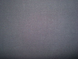 T/C Wax Canvas Fabric pictures & photos