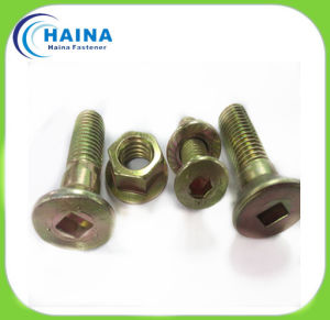Color Plated Carbon Steel Square Socket Cap Countersunk Head Screw, Countersunk Bolt pictures & photos