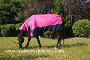 Summer Sheet, Horse Rug, Horse Blanket (NEW-19) pictures & photos