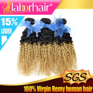 5A Fashion Brazilian Kinky Curl Ombre Human Hair Extension pictures & photos