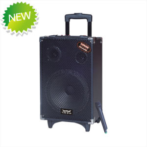 Rechargeable Battery DJ Speaker Box with USB/SD (Q10) pictures & photos
