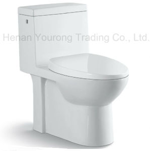 Ceramic Siphonic One-Piece Sanitary Ware (No. YR15)