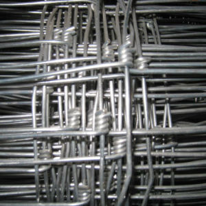 Farm Fence/Hot Sale Farm Fence/PVC Coated Farm Fence /High Quality Farm Fence (SH12) pictures & photos