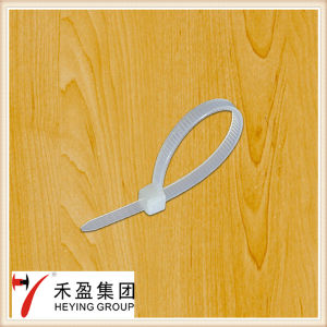 3.6*100 Cable Tie, Self-Locking in China pictures & photos