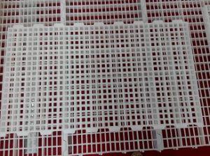 Poultry Plastic Flooring Slats for Chicken House Farm (JCJX-06)
