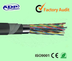 Jelly Filled Armored Telephone Cable (from manufacturer) pictures & photos