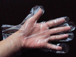 PE Glove/HDPE Disposable Glove pictures & photos