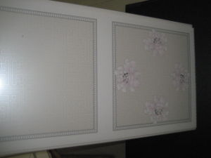 Hot Transfer PVC Decoration Panel (HT001) pictures & photos