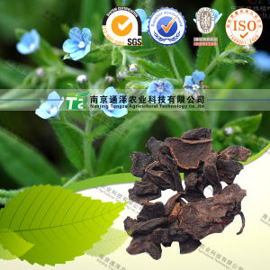 Herb Medicine Radices Lithospermi Lithospermum pictures & photos