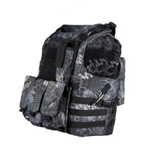 Tactical Vest Outdoor Vest Specter RAV Molle Vest pictures & photos