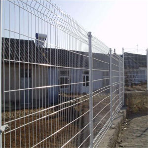 Peach Shaped Post Welded Wire Mesh Fence pictures & photos