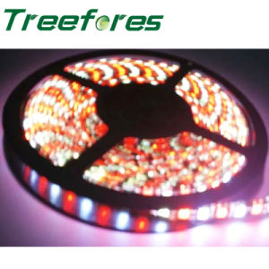 Underwater LED Strip Light DMX 512 Strips pictures & photos