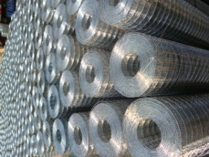 Square Hole Hot-Dipped Galvanized Welded Wire Mesh for Construction and Cage pictures & photos