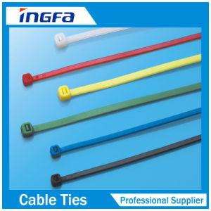 Plastic Cable Tie Mounts pictures & photos