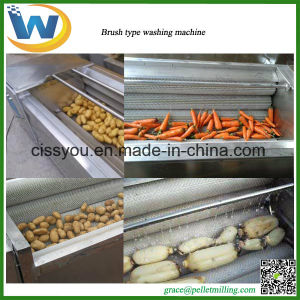 Chinese Stainless Steel Brush Vegetable Fruit Washing and Peeling Machine pictures & photos
