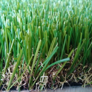 Thick Natural Looking Grass Carpet for Roof Flooring pictures & photos