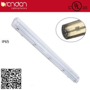 Double Tube Fluorescent IP65 Vapor Tight Lighting Fixture (T5)