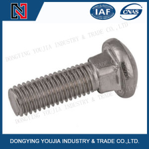 DIN603 Stainless Steel Mushroom Head Square Neck Bolts pictures & photos