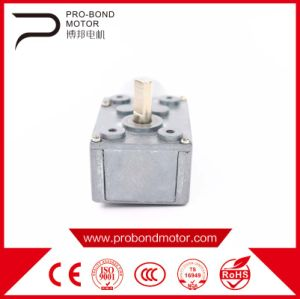DC Worm Gear Motor 24zyj Wholesale pictures & photos
