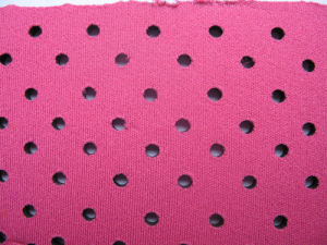 Perforated Neoprene Sheet Approval SGS (NS-013) pictures & photos