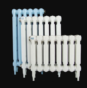 Newest Design Home Die-Cast Aluminum Water Radiator pictures & photos