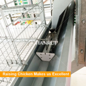 Pakistan Automatic Poultry Farm Chicken Pan Feeder for Broiler pictures & photos