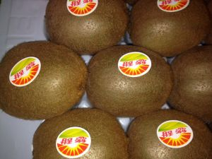 Fresh Juicy Kiwi Fruit Large Supplier pictures & photos