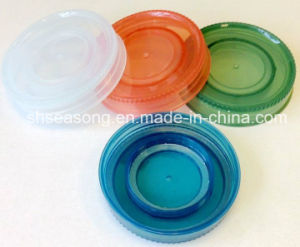 Double Screw Lid / Plastic Bottle Cap / Bottle Closure (SS4302) pictures & photos