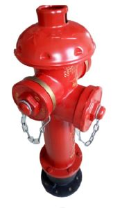 Outdoor Fire Hydrant Landing Valve pictures & photos