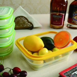 Better Life Fresh Keeping Box Collapsible Silicone Food Containers with Clever Valve Lids pictures & photos