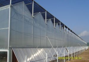 High Quality PC Sheet Commercial Greenhouse pictures & photos