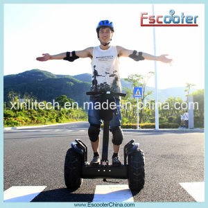 500W 800W 1000W Adult Foldable/Folding 2 Wheel Electric Scooter with CE Certificate pictures & photos