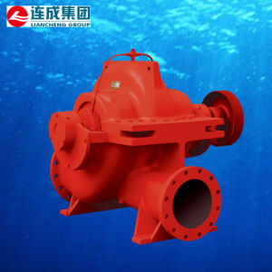 Axially Split Volute Casing Pump pictures & photos
