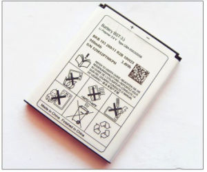 Mobile Phone Battery Bst-33 for Sony Errison, OEM Standard