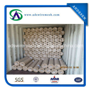 Chile Standard Welded Wire Mesh pictures & photos