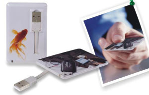 Credit Card / Name Card Flash Memory Business Gift USB Card Pen Drive pictures & photos