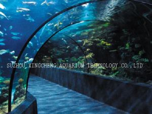 Unbreakable Plastic Acrylic/Clear for Life Acrylic Aquarium/Transparent Flexible Acrylic Sheet pictures & photos