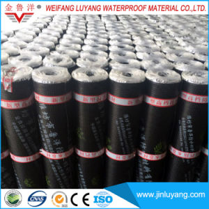Durable Water Resistive Membrane Sbs Modified Bitumen Waterproof Roofing Membrane pictures & photos