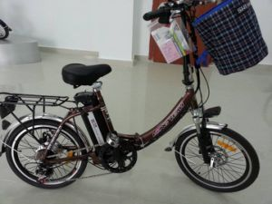 Foldable Electric Bike pictures & photos